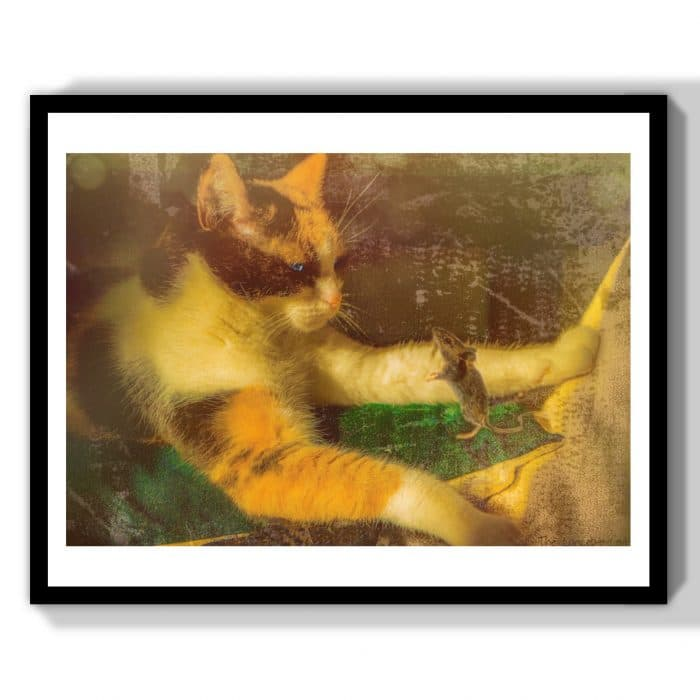 chat et souris art animalier