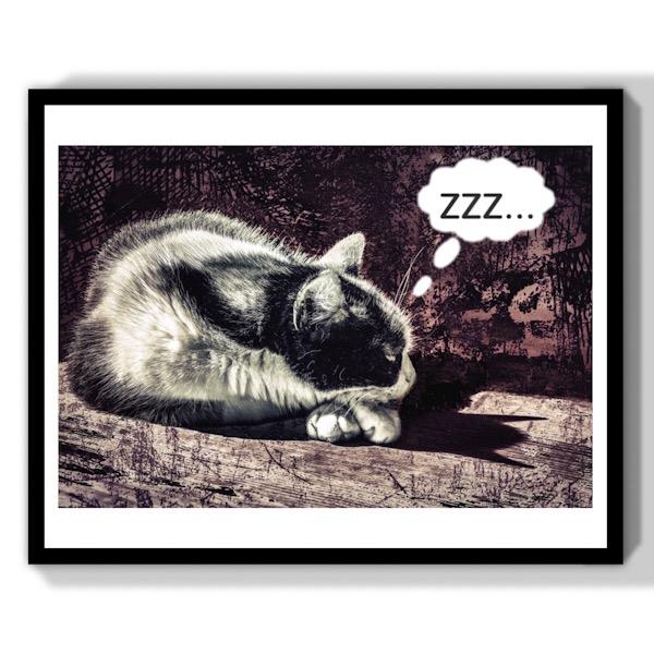 chat qui dort bande dessinée gothique