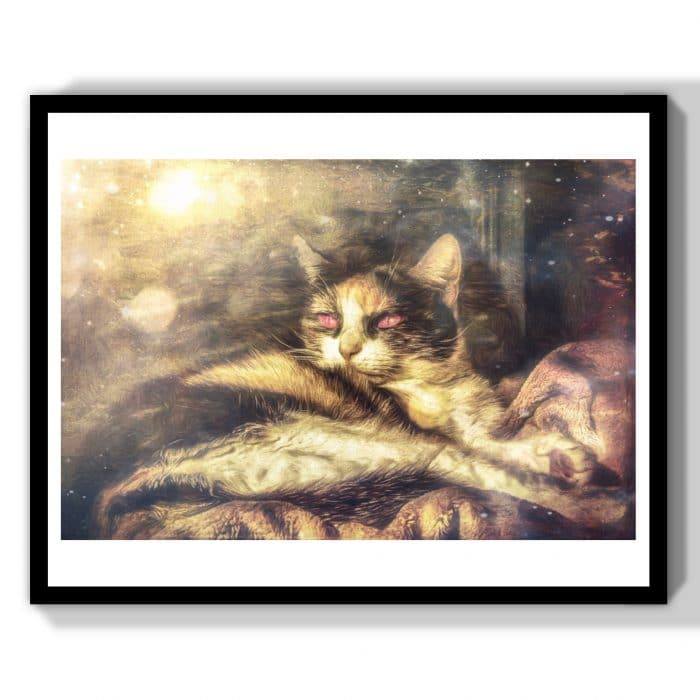 chat de sorcière gothique