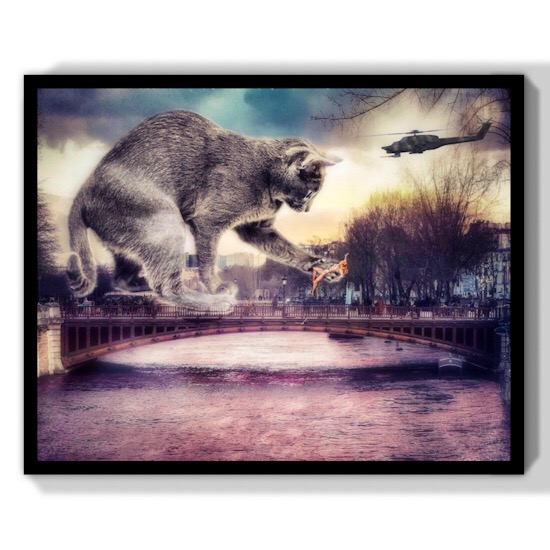 Chat film catastrophe King kong