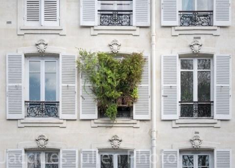 art photography Jacques Julien
