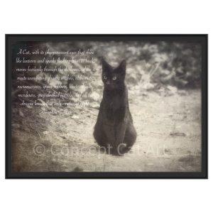 photo illustration poésie impression d'art