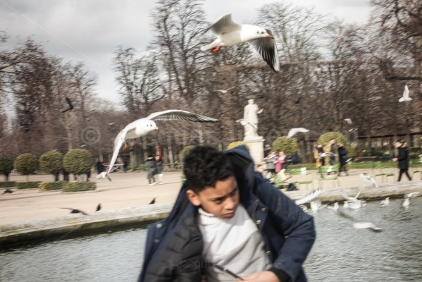 young man is attacking by birds